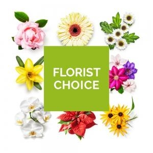 Florists Choice Aqua Pack